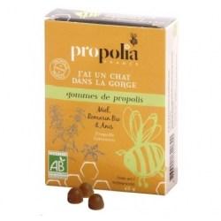 Gommes de propolis Bio - Romarin
