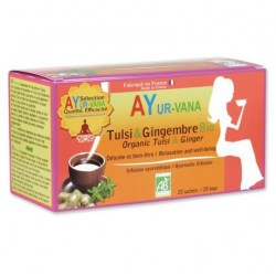 Infusion Tulsi & Gingembre
