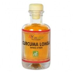 Curcuma longa (épice)