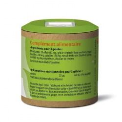 Notice Brulvit - 60 gélules végétales - Graine Sauvage