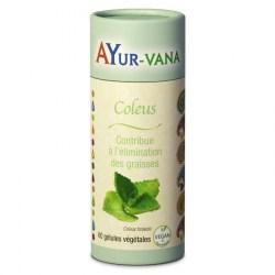 Coleus - Pilulier de 60 gélules végétales - Ayurvana - 2021