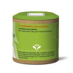 Charbon Végétal Actif - 80 gélules végétales - Graine Sauvage