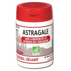 Astragale Bio